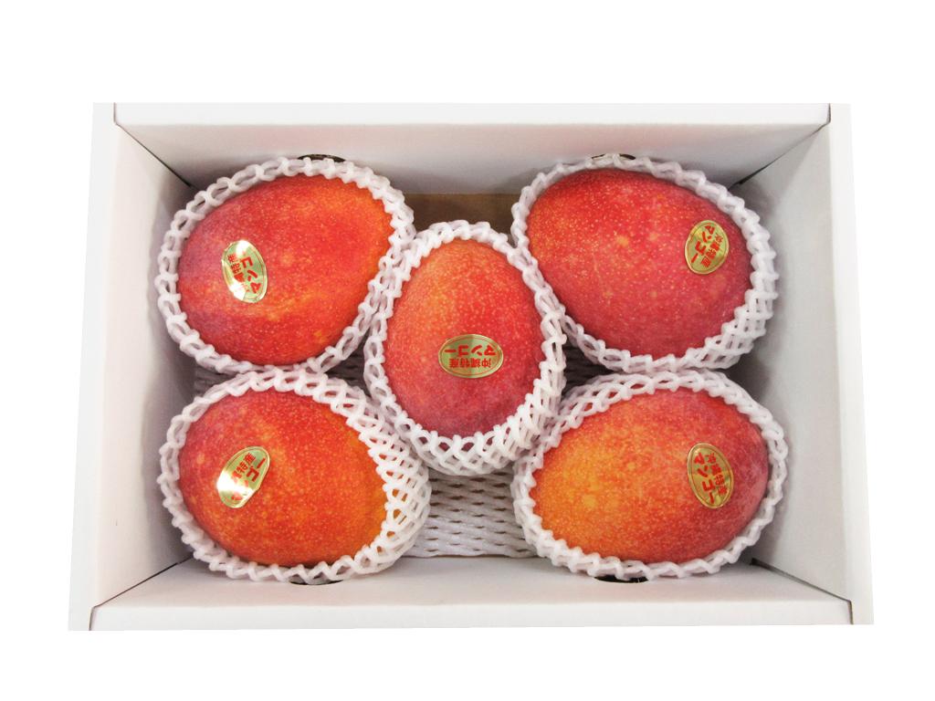 アップルマンゴー贈答用